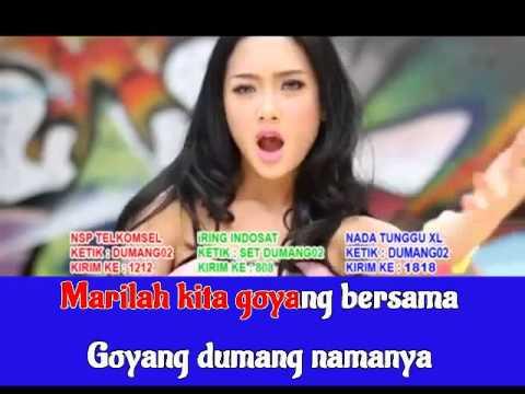 Cita Citata   Goyang Dumang Karaoke