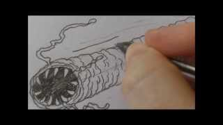How To Draw A Wyrm Creature