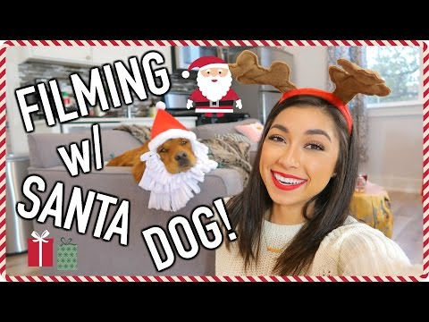 Santa Dog & Graduation Dress Shopping! | VLOGMAS DAY 2 | Jeanine Amapola