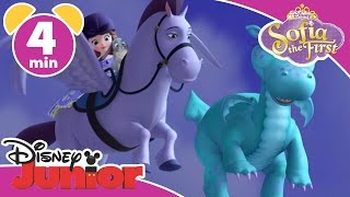 Magical Moments | Sofia the First: Crackle The Dragon | Disney Junior UK