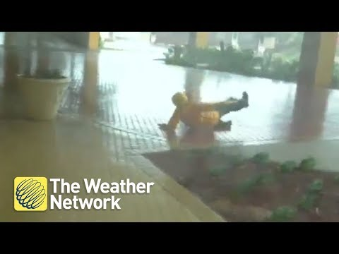 Watch wind take storm hunter right off her feet in Hurricane Michael - October 10, 2018