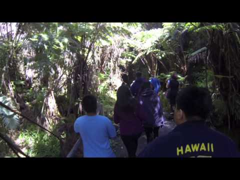 Thurston Lava Tube Hike