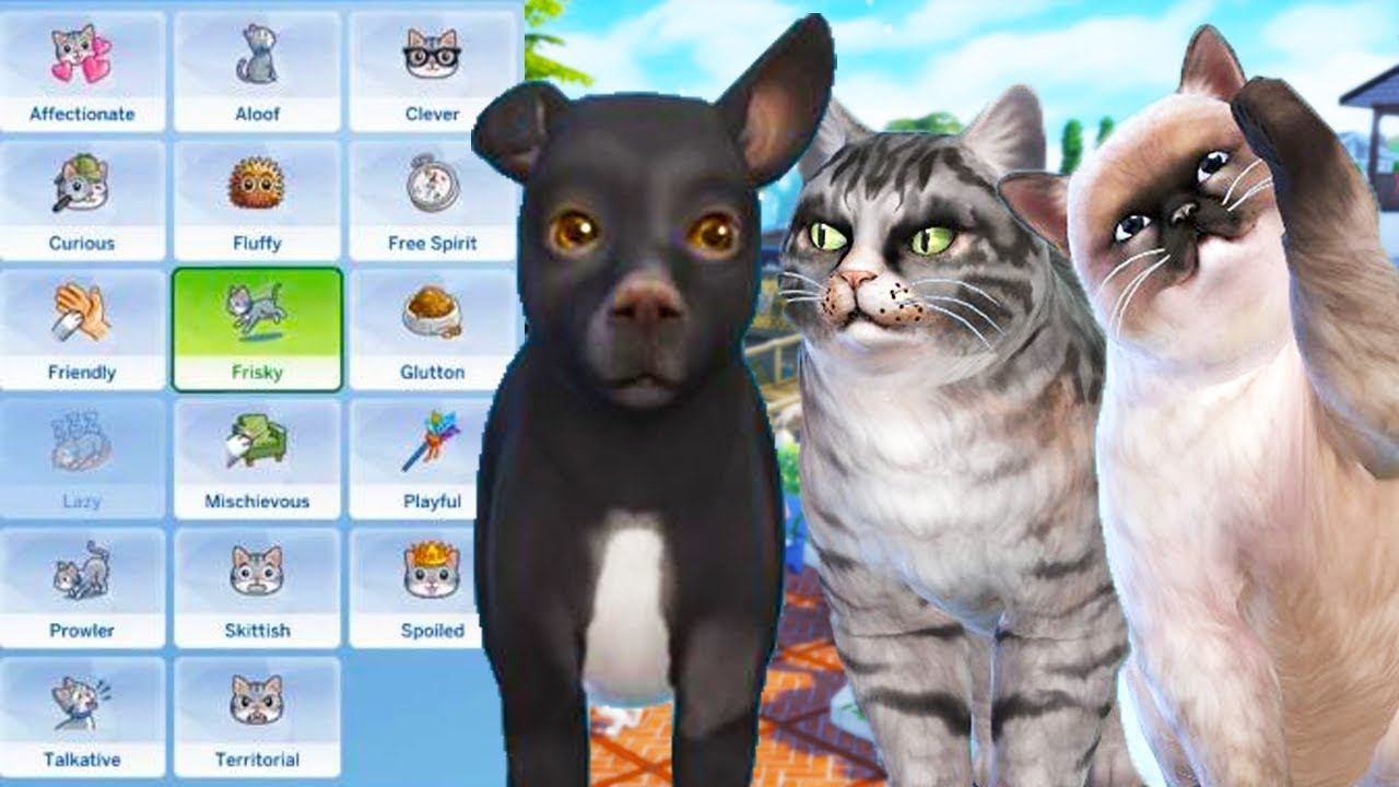 cats dogs pet traits breeds outfits screenshots the sims 4 youtube. Black Bedroom Furniture Sets. Home Design Ideas