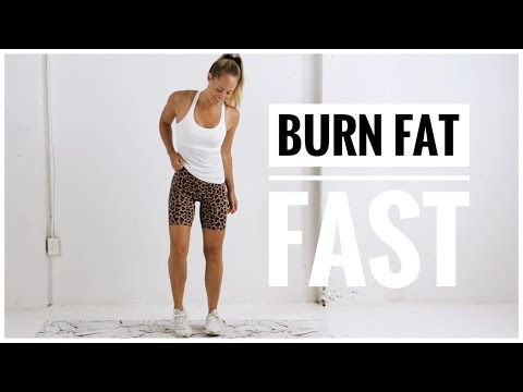 Full Body FAT BURNING Workout // No Equipment HIIT Workout