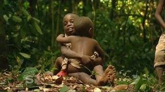 Pigmy Tribe