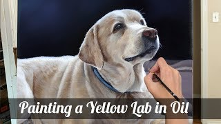 Painting a Lab in Oil- (Lizzie)