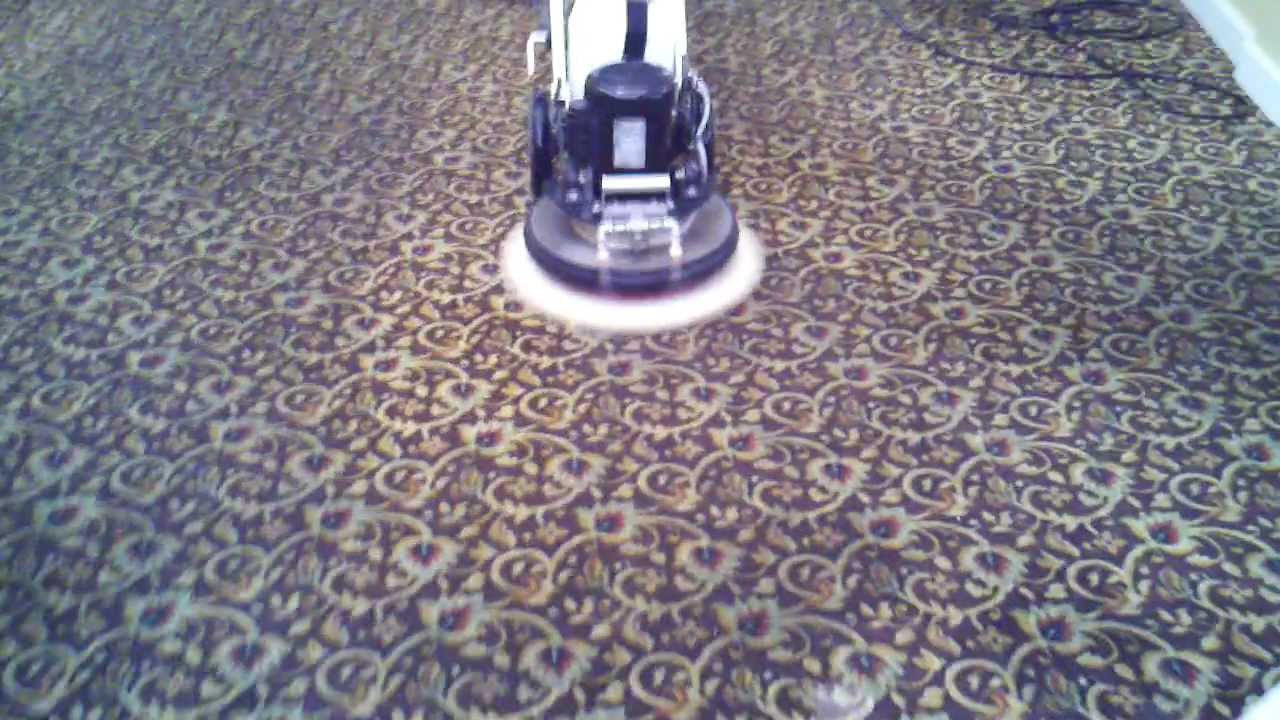 how to get bike grease out of carpet