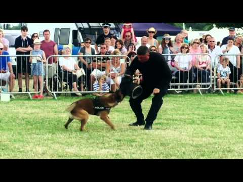 Cheshire County Show 2014