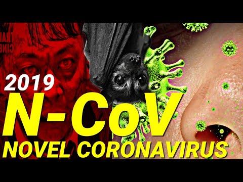 WUHAN CORONAVIRUS 2020 | DEADLY VIRUS