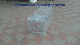 Гуманная ловушка для котов (котоловка)