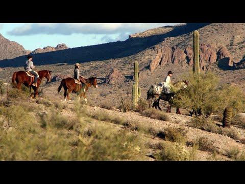 10 Best Tourist Attractions In Chandler, Arizona
