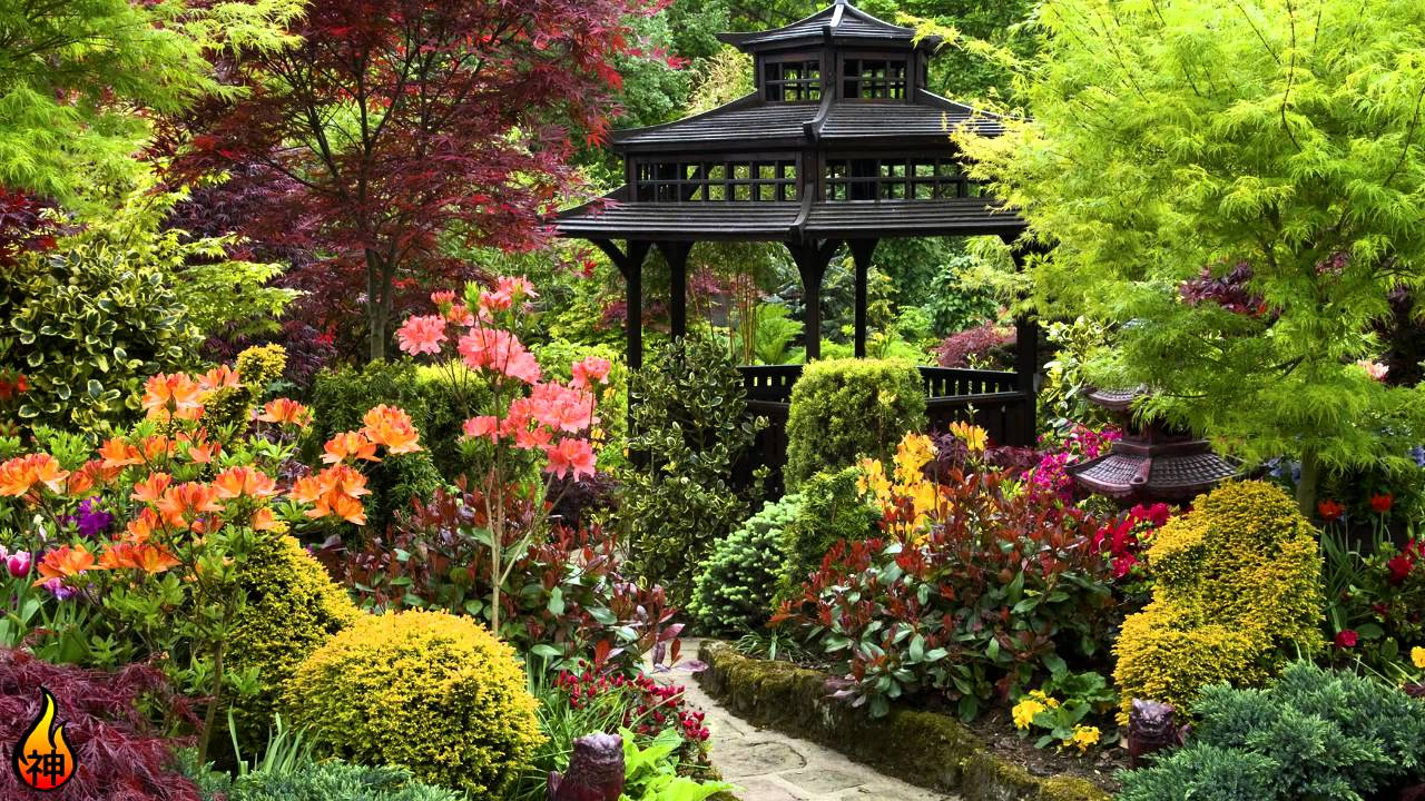 1 Hour Relaxing Music | Japanese Garden | Chill Out, Relaxing, Asian ...