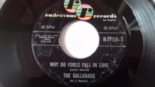 GALLAHADS - WHY DO FOOLS FALL IN LOVE - RENDEZVOUS 153