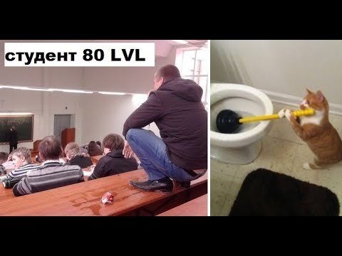 Лютые приколы интернета. Студент 80 уровня! Четкий!