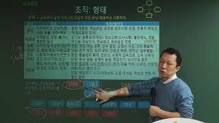 홍쌤의 거꾸로 교육학 제 53강 7. 교육행정_ 조직 …