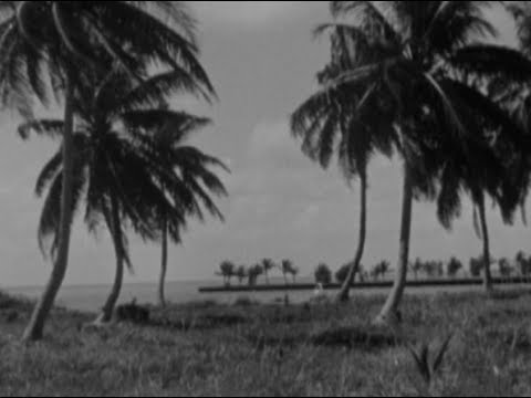 What Did Key Biscayne Look Like 65 Years Ago?