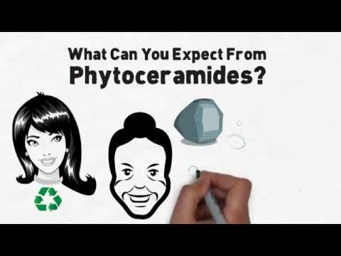 Phytoceramides: The Future Of Anti-Aging Skin Care?
