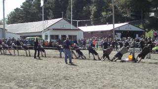 Hants vs Pictou - 2013 Championships