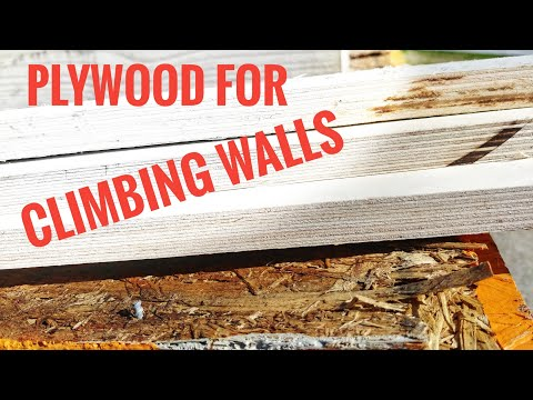 Building Climbing Walls, What Plywood To Use