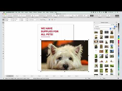 How To Use Clipart In CorelDRAW (Mac)
