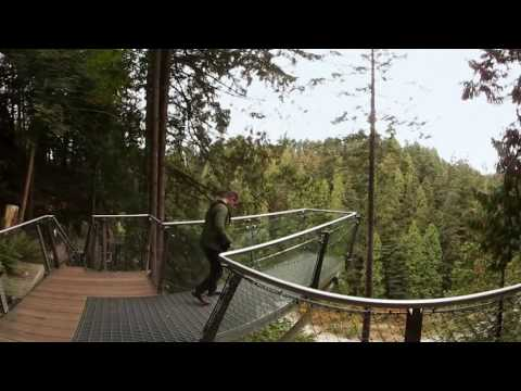 Up high at Capilano Suspension Bridge Park in 360° - Lonely Planet