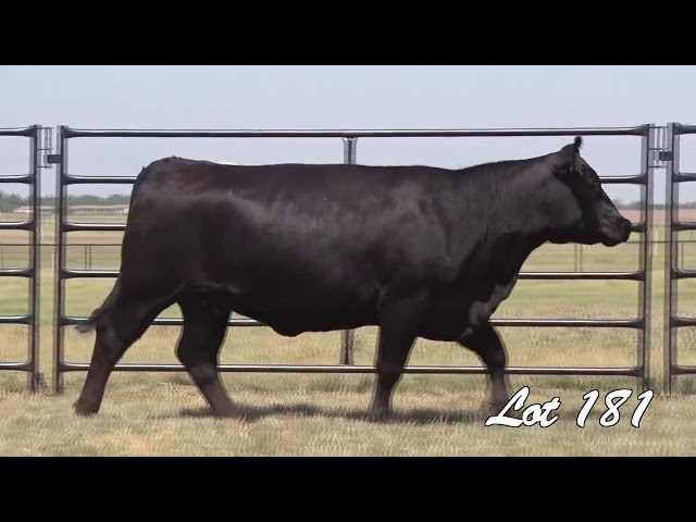 Pollard Farms Lot 181