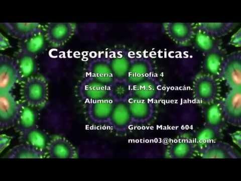 categorías-estéticas.