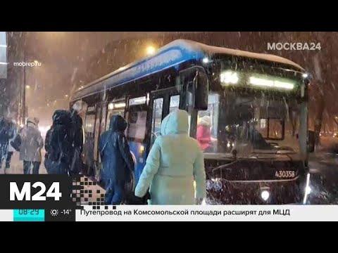 Москвичам пообещали морозную погоду - Москва 24