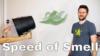 What is the Speed of Smell? Is It Possible to Actually Launch Smell With a Smell Cannon?