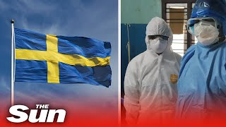 Is Sweden heading to a COVID-19 catastrophe after refusing lockdown?