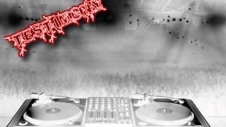 Testimony2 - Dub calibration mix