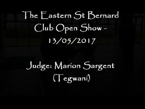 Eastern St Bernard Club Open Show - May 2017
