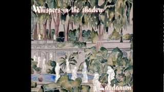 WHISPERS IN THE SHADOW - No Colours
