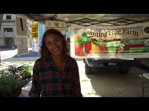 Organic Farmers Market in Sacramento, CA