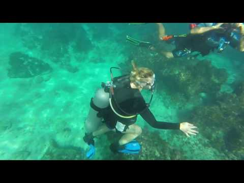 Dive Right In Hull Cleaning LLC Videos