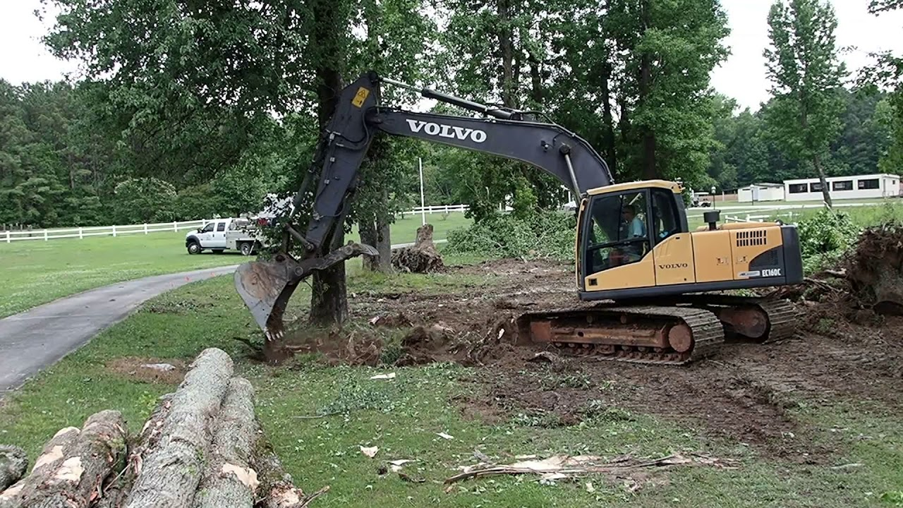 Removing Some Rotting Yard Trees - YouTube