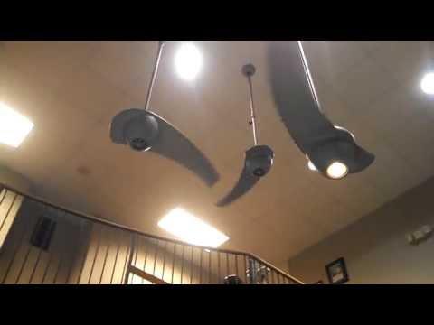 Video Tour of the Fanimation Ceiling Fan Co, Part 1