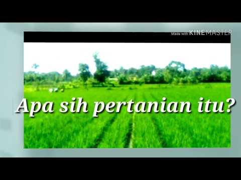 Apa Sih Pertanian Itu Youtube