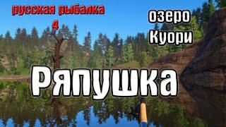 Русская рыбалка 4 рр4 rf4 озеро Куори Ряпушка