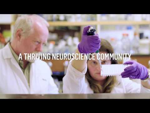 Montréal, city of neuroscience