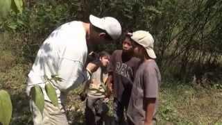 FRANK CUESTA - Serpientes e hijos (Natural Frank)