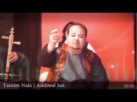 Tamim Nala    Andiwal Jan آهنگ تمیم ناله اندوال