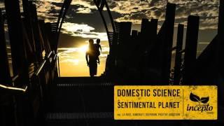 Domestic Science - Sentimental Planet (Original Mix)