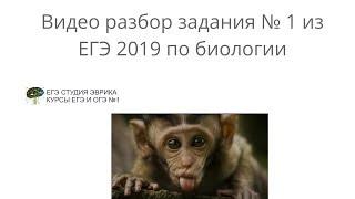 Подготовка к ЕГЭ 2019 биология 1 задание