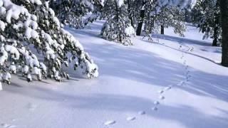 Debussy Prelude Book 1 No.6 - Des pas sur la neige