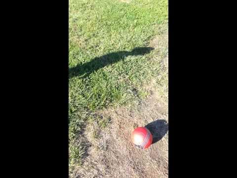 Dresden playing soccer