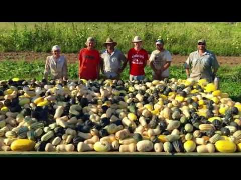 Direct Marketing with PrairiErth Farm in Illinois
