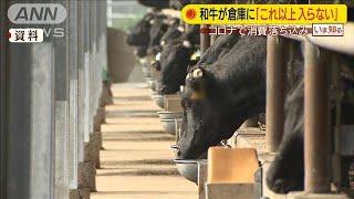 農水大臣「和牛は倉庫に入らないほど」消費落ち込む(20/03/27)