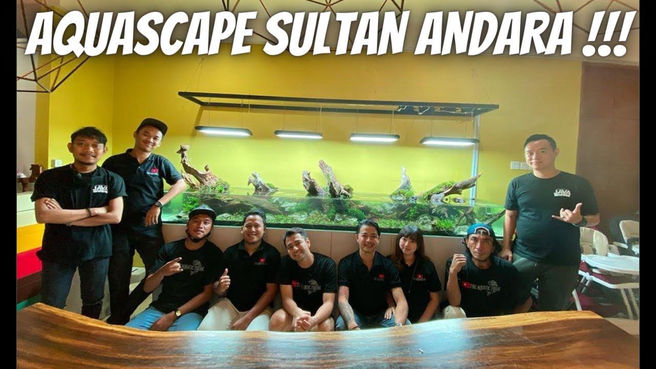 AQUASCAPE SHALLOW DI RUMAH SULTAN ANDARA UDAH JADI BRO !!!!