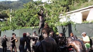 Dimanche 11 janvier 2015 : Début du carnaval sur Vieux-Fort